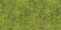 GT3 - Hellgrün meliert